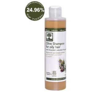Hair Care BIOselect Olive Shampoo for Oily Hair