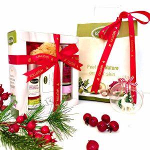 Face Care Kalliston Silky Face Cream for Oily Mixed Skin – Gift Set